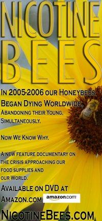 Nicotine Bees