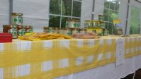Das Ergebnis der Arbeit: Honig. Gummibärchen und Bonbons
